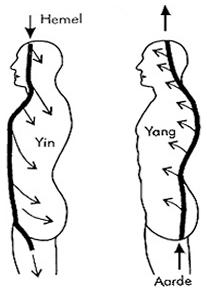 Aarde en Hemelkracht worden opgeno- men door het lichaam en door de meri- dianen en nadi'sgebracht tot in elke cel.